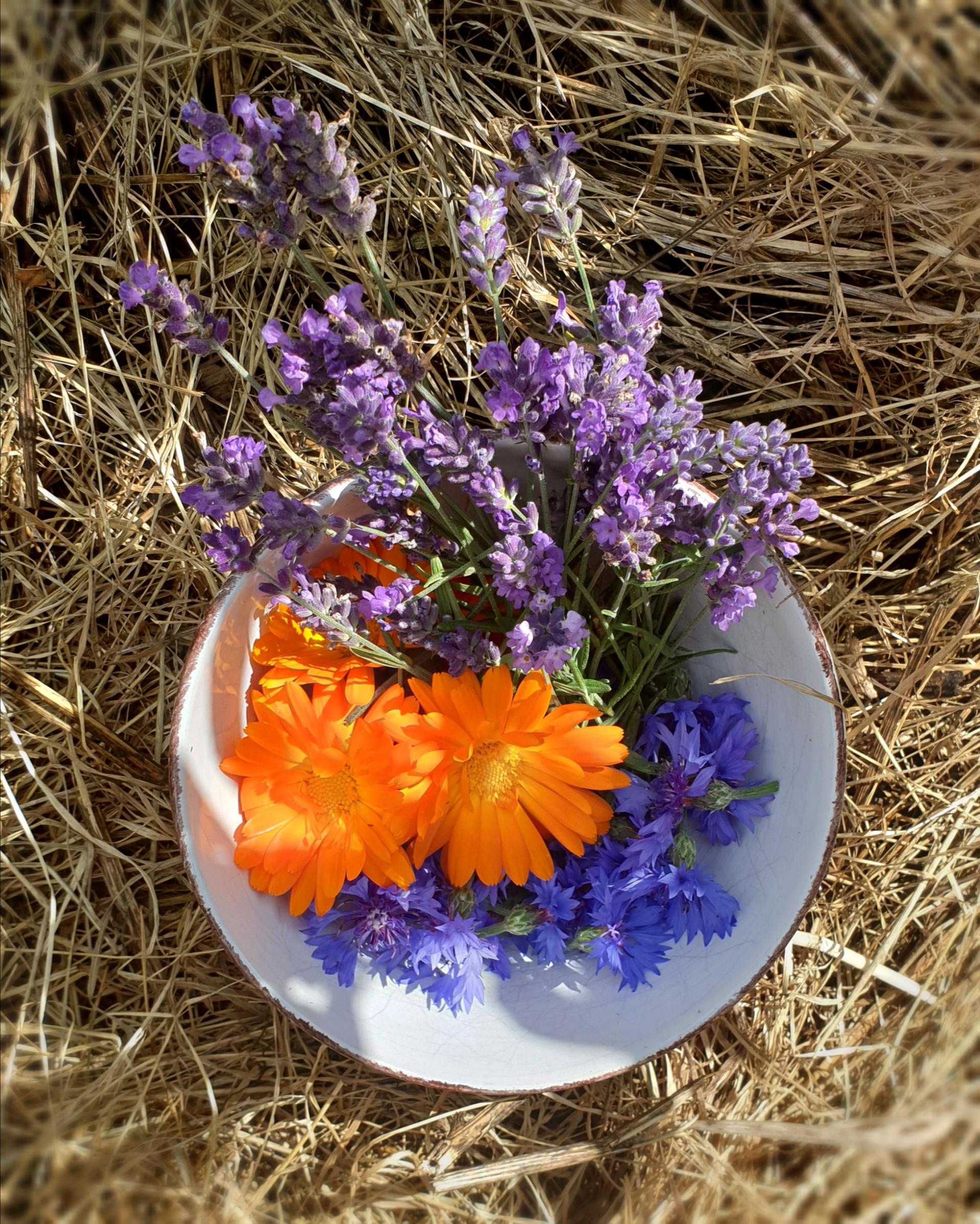 Skörda blommor